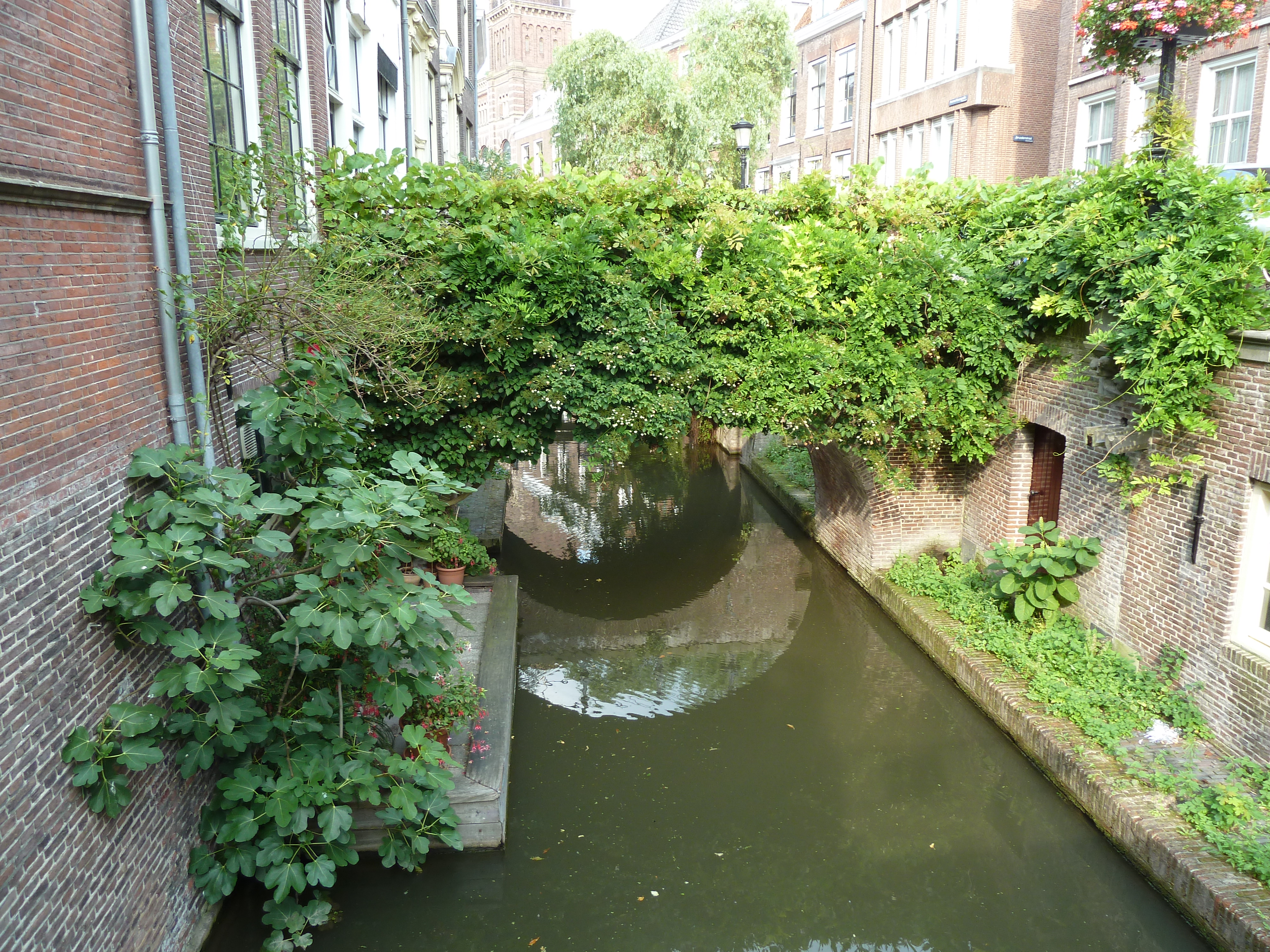 Charmant petit canal