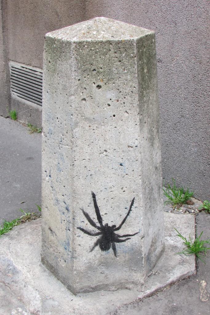 Araignée sur un pylone