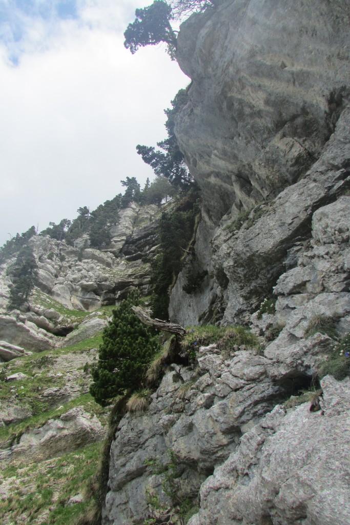 Dans la montagne iséroise