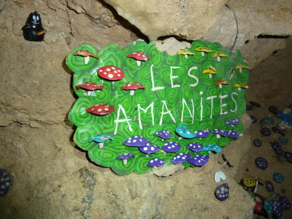 Les Amanites, plaque