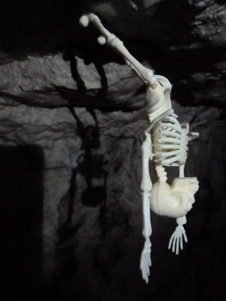 Squelette renversé.