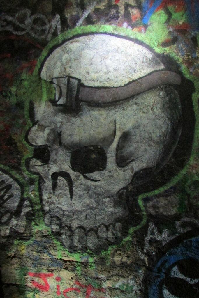 Full Frontale Skull