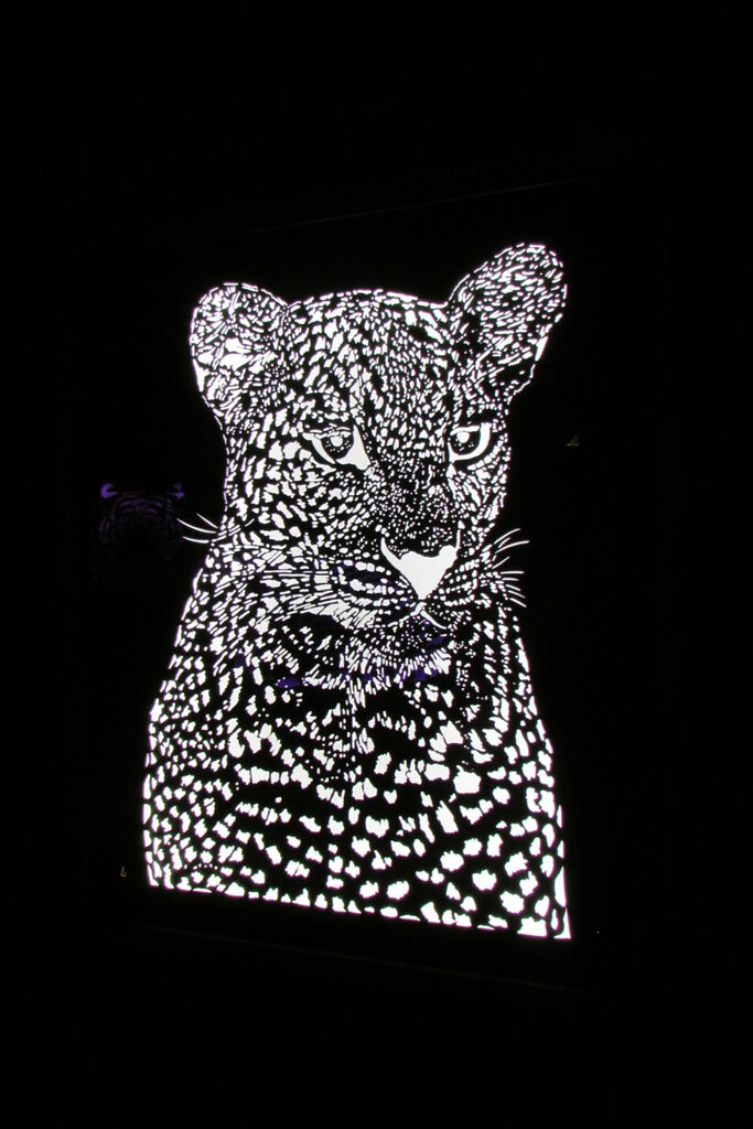 Jaguar ?