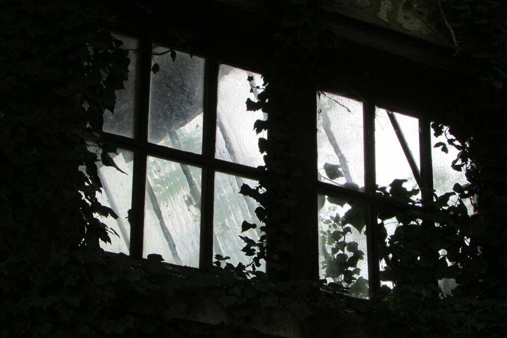 Fenêtre sur fenêtre