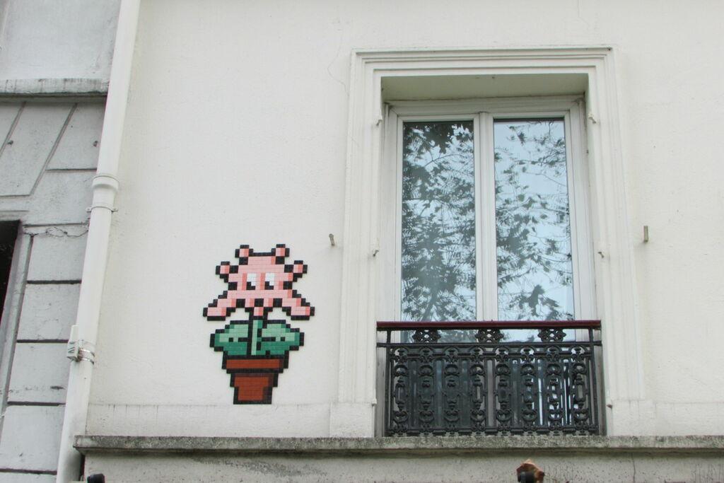 Fenêtre et fleur d'invader
