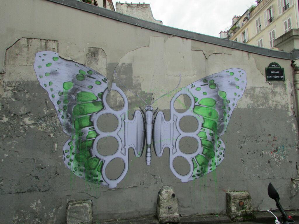 Papillon américain