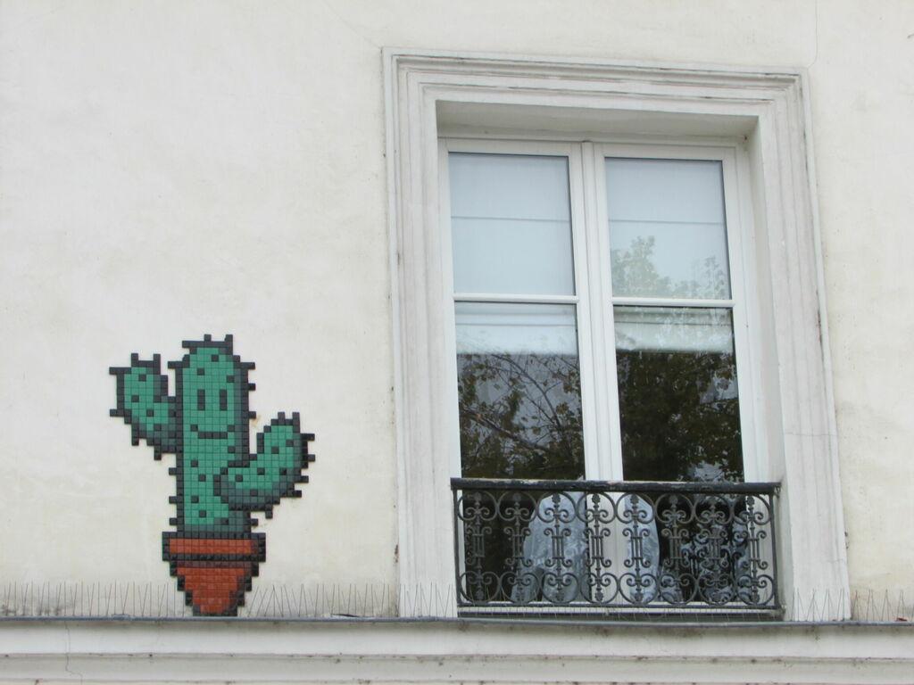 Invaders Cactus et fenètre